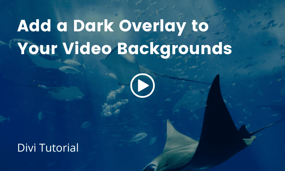 Add an Overlay to Video Background (Divi Tutorial)